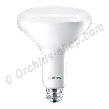 GreenPower LED flowering lamp (deep red / white / far red)
