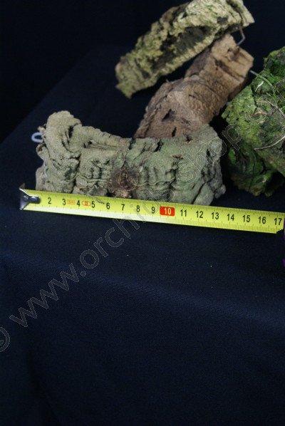 kurkschors kleine maat blokje +/- 13 cm lang met haakje