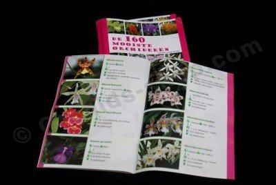 De 160 Mooiste Orchideeën