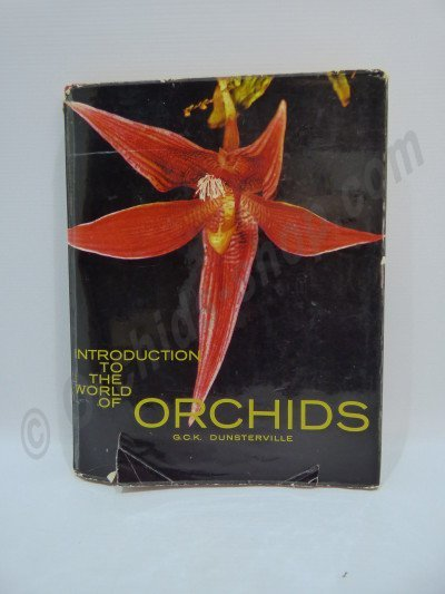 Introduction to the world of orchids