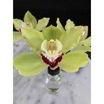 Glazen orchideeen Vaasje  5 st (Voor een bloem)